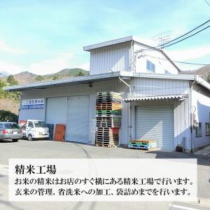1000円ポッキリ 全9種類 真空パッケージ お米の食べ比べセット 選べる2袋(各300g 約2合) bussan10 07