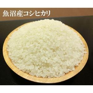 全15種類 お米の食べ比べ 選べる 15個セット(各300g 約2合) すわげんの省洗米 bussan10 04