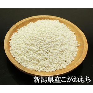 全15種類 お米の食べ比べ 選べる 15個セット(各300g 約2合) すわげんの省洗米 bussan10 05