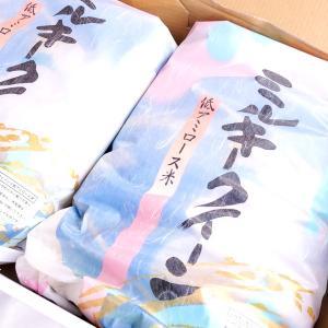栃木県産ミルキークイーン 10kg(5kg×2袋) すわげんの省洗米 低アミロース米|bussan10