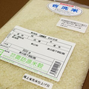 1000円ポッキリ 新米 31年産 新之助 お試し 900g すわげんの省洗米|bussan10