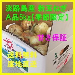 新玉ねぎ 淡路島産 A品 5kg 季節限定 新たまねぎ 新タマネギ 新玉葱|bussan10