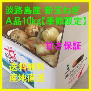 新玉ねぎ 淡路島産 A品 10kg 季節限定 新たまねぎ 新タマネギ 新玉葱|bussan10
