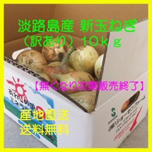 新玉ねぎ 淡路島産(訳ありサイズ混合)10kg 季節限定|bussan10