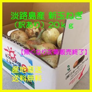 新玉ねぎ 淡路島産(訳ありサイズ混合)20kg 季節限定|bussan10
