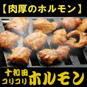 十和田コリコリ ホルモン 焼肉用味付 500gx2 送料無料|bussan10