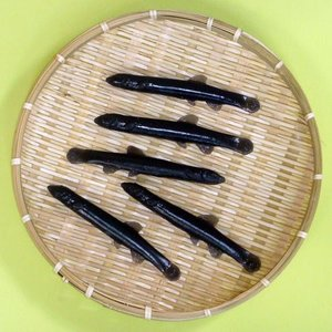 どじょうすくい 特製ゴムのどじょう(一匹) 安来節 一宇川勤 bussan10