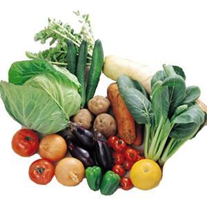 野菜セット 約2kg〜3kg 5種類以上 淡路産又は四国産(主に徳島産・香川産・高知産・愛媛産)|bussankan