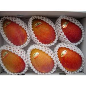 【沖縄県産】完熟マンゴー2kg《5〜6玉・化粧箱》お中元などギフトにどうぞ bussannet