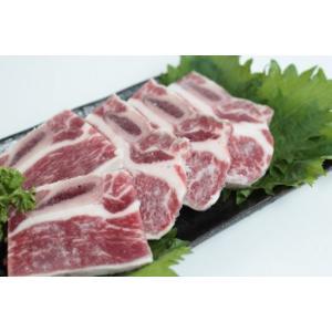 牛骨付カルビカット【アメリカ産】冷凍(500g)|butcher