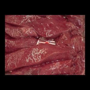 牛新鮮極上レバー【西日本産】加熱用(200g)|butcher