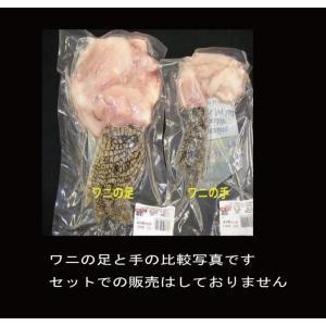 ワニの手【豪州産】Sサイズ1本(約110-165g)冷凍パック|butcher