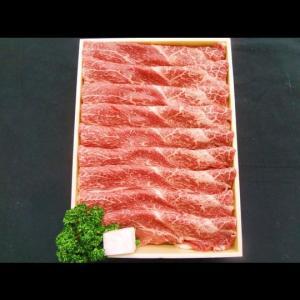 B-01 黒毛和牛 赤身肉スライス (500g)|butcher