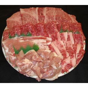 Y-06 お得用バーベキュー盛り合わせ焼肉セット 「お値打ち価格」(計1kg)|butcher