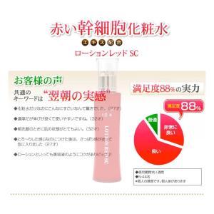 赤いフラーレン化粧水 APPS 白金 アスタキ 幹細胞 蛇毒 30種超の美肌成分 赤い幹細胞化粧水 タイムレジェンド ローションレッド 120mL|bw-shop|11