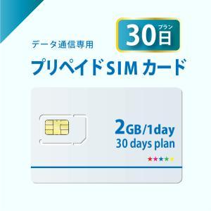 データ通信sim プリペイドSIMカード 30日プラン docomo回線 4G/LTE対応 送料無料 日本 国内 利用|bwi