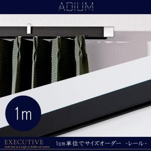 カーテンレール アイアンレール ADIUM 専用 部材 レール エグゼクティブ 0.5~1m|c-ranger