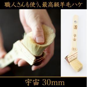刷毛 ハケ はけ 宇宙/30mm
