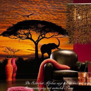 だまし絵 輸入壁紙 クロス 大自然と象の風景写真 ドイツ製/4-501 African Sunset アフリカの夕日 194×270cm 北欧 c-ranger