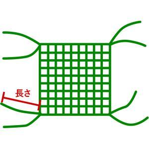 ネットオプション/四隅直線仕上げ 2本出し 30cm|c-ranger