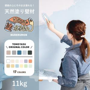ひとりで塗れるもん 11kg 天然塗り壁材|c-ranger