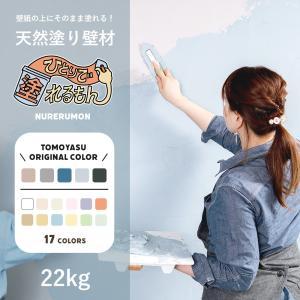 ひとりで塗れるもん 22kg 天然塗り壁材|c-ranger