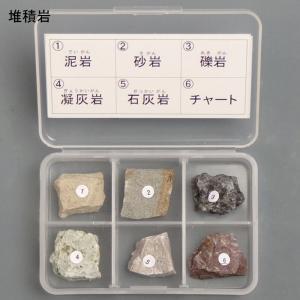堆積岩6種セット|c-task