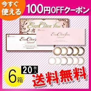 エバーカラーワンデー ナチュラル ナチュラルブラウン 20枚入×6箱 /送料無料 /100円OFFクーポン|c100