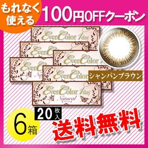 エバーカラーワンデー ナチュラル シャンパンブラウン 20枚入×6箱 /送料無料 /100円OFFクーポン|c100