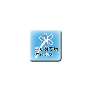 桃美人の詳細画像4