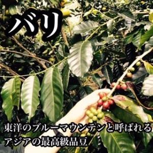 コーヒー豆 送料無料 バリ(インドネシア)- 600g|cafe-adachi