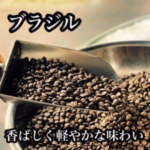 ブラジル No.2 完熟 - 200g|cafe-adachi