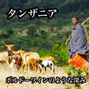 キリマンジャロ(タンザニア AA KIBO) - 200g|cafe-adachi