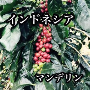 マンデリン G-1 リントン- 200g|cafe-adachi