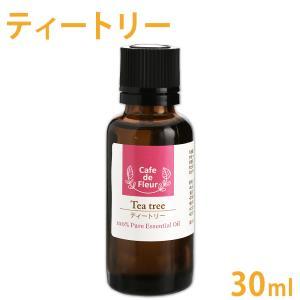 100%天然精油 ティートリー 30ml(ティーツリー ティートゥリー 精油 エッセンシャルオイル ...