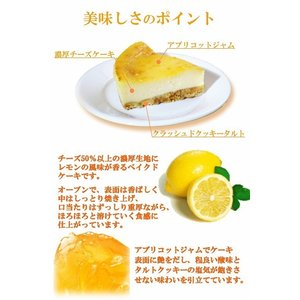 ベイクドチーズケーキ(チルド冷蔵) (定番 人気 お取り寄せ ギフト 贈答)|cafe-enishida|03