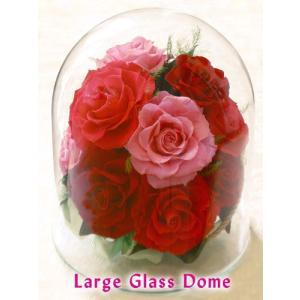 プリザーブドフラワー ガラスのドーム (特大プレミアム) |cafura