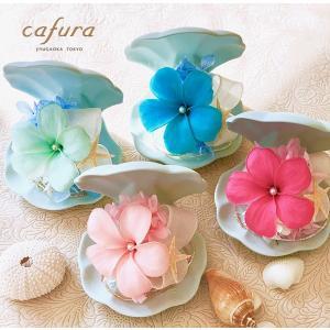 プリザーブドフラワー プルメリア 人魚姫 リトルマーメイド 彼女 プレゼント おしゃれ 可愛い 貝殻|cafura