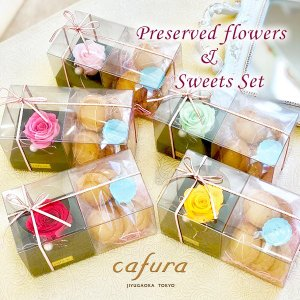 プリザーブドフラワー スイーツ ギフト カーネーション テディベア ぬいぐるみ 一輪のバラ サブレセット プチギフト 誕生日祝い|cafura
