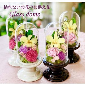 枯れないお供え花ガラスドーム入り(BR)|cafura