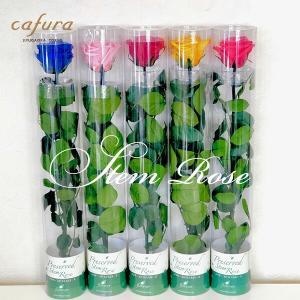 プリザーブドフラワー バラ1輪 お祝いギフト プレゼント|cafura