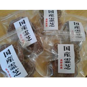 国産霊芝 長野県産マンネン茸 80g×5パック2割引 お買い物セット|cagami|02