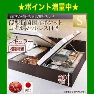 国産 収納ベッド Renati-DB レナーチ ダークブラウン 薄型抗菌国産ポケットコイルマットレス付 横開き シングル 深さレギュラー[4D][00]