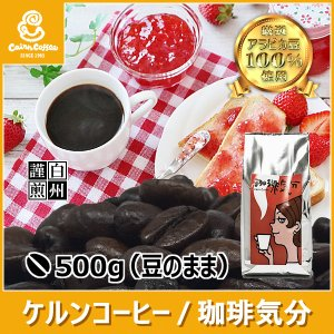 コーヒー豆 珈琲気分 500g(豆のまま) 自家焙煎 珈琲 珈琲豆 商品番号12860 cairncoffee