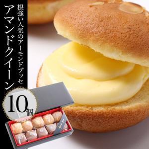 『アマンドクィーン』ギフトセット(10個入り) 根強い人気でリピーターが多い大陸の代名詞的菓子 cake-tairiku