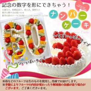 誕生日ケーキに大人気 記念の数字を形にしました。『ナンバーケーキ』7号 フルーツいっぱいといちごいっ...