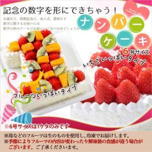 誕生日ケーキ アニバーサリーケーキ☆ 記念の数字を形に!(※1ケタのみ) 『ナンバーケーキ』6号 フルーツといちごの2タイプ|cake-tairiku