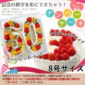誕生日ケーキに大人気 『ナンバーケーキ』8号 フルーツいっぱいといちごいっぱいの2タイプ 記念の数字を形にしました。|cake-tairiku