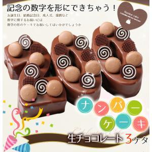 数字の形のケーキ ナンバーケーキ 3ケタ 生チョコレートタイプ 誕生日ケーキ アニバーサリーケーキ♪数字の形のケーキでお祝い☆|cake-tairiku
