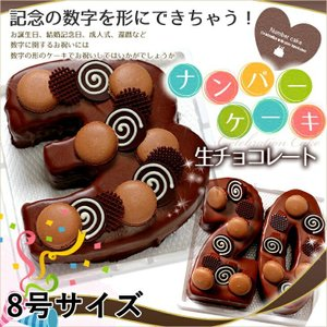 数字の形のケーキ ナンバーケーキ 8号 生チョコレートタイプ 誕生日ケーキ アニバーサリーケーキ♪数字の形のケーキでお祝い☆|cake-tairiku